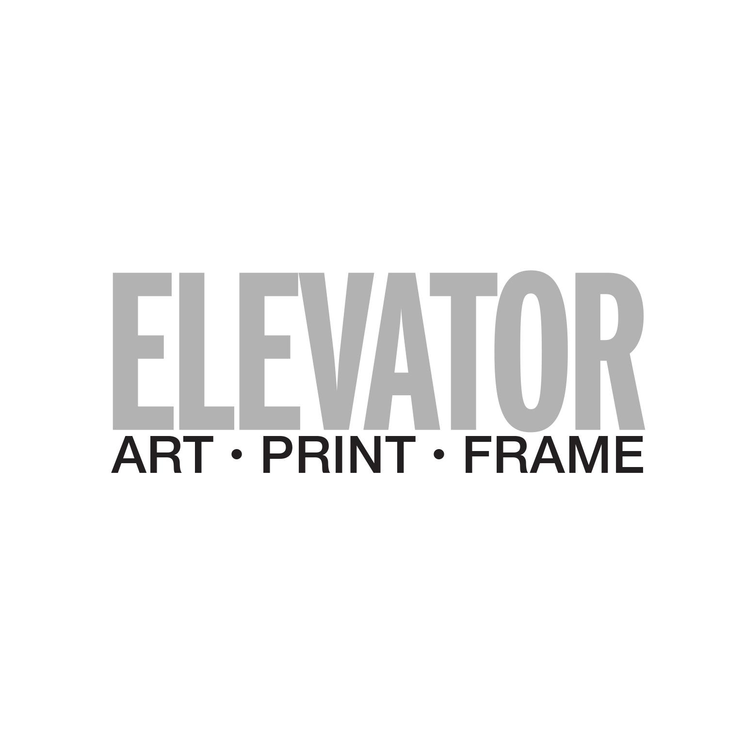 Kevin Viner, Principal, Elevator Digital Ltd.