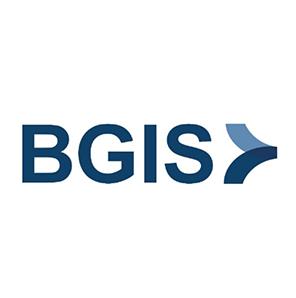 Gord Hicks, CEO, BGIS